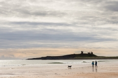 Dunstanburgh Castle dog-7599-2